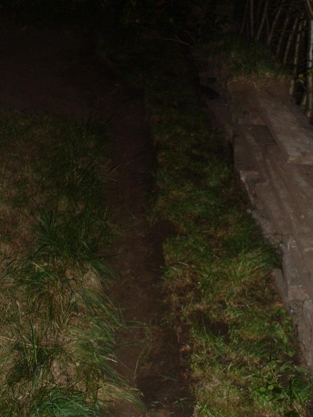 Half zo breed als het originele stenen pad.